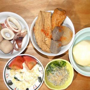 厚揚げ・大根・コンニャクの煮物