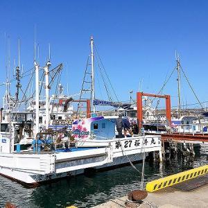 今年も桜井丸でヒラメ釣り!