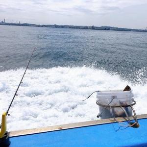 シケ後は釣れる!という話を信じていく「カサゴ&アジ釣り」