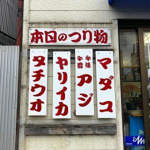 怒涛の追い上げ!エギタコ釣りが楽しい東京湾!