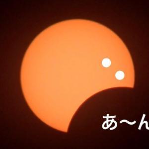日食でパワーチャージ\( ˆoˆ )/オラに力を貸してくれ