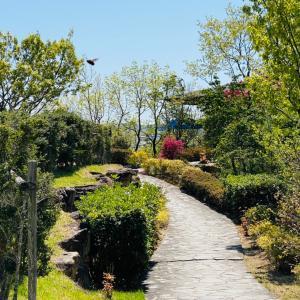 最高峰のマスターズと最低麓の神戸カントリー
