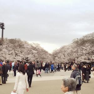 春!!~新年度出演まとめ~