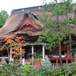 山形県鶴岡市 出羽三山神社 随神門から三神合祭殿へ 杉並木が続く表参道を歩く