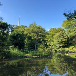 【南麻布】有栖川宮記念公園 子供たちの賑わいと緑豊かな都心のオアシスは林泉式庭園