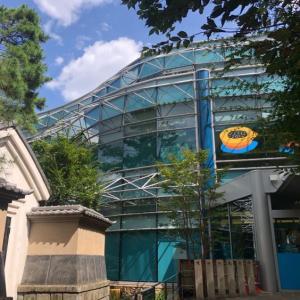 【世田谷】世田谷文学館 企画展「イラストレーター 安西水丸展」イラストで旅する日本や世界各地