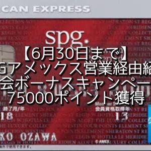 【6月30日まで】75000P獲得:SPGアメックス営業経由紹介入会ボーナスキャンペーン。