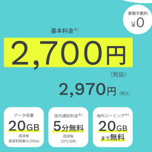 【ahamo】ドコモをお得に利用。月2970円で国内海外データ通信できる。プラン内容から注意点・利用経過まで紹介。