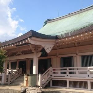 豪徳寺の猫以外の場所の写真