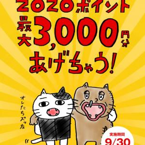 ZOZOTOWNで1500円分のポイントがもらえます❤︎