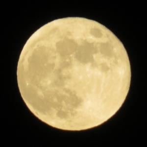 Strawberry Moon June 2020