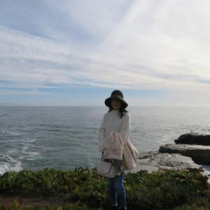 Happy New Year from Santa Cruz Beach !