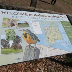 Bedwell Bayfront Park 散歩とFacebookキャンパス
