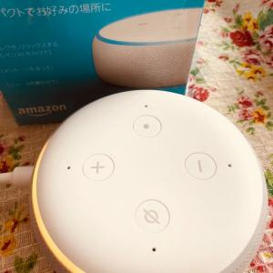 Amazon echo dot 999円♡
