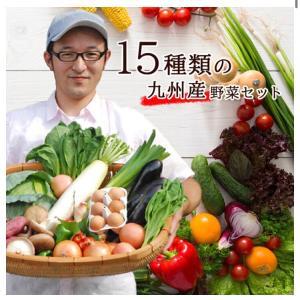復活の福岡野菜20ぱーOFF♡ポチしました
