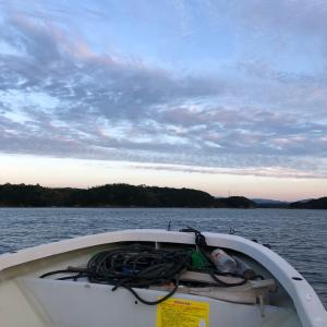 西尾渡船 筏かかり釣り④