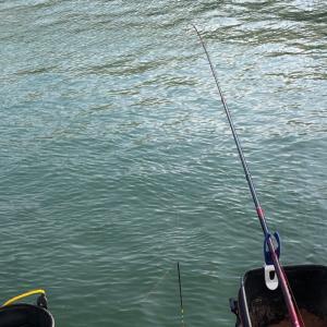 名港周辺② フカセ釣り