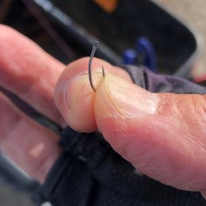 名港周辺㊶ フカセ釣り