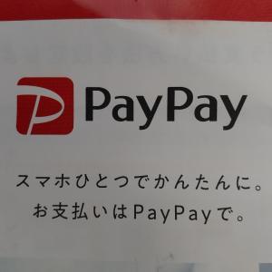 PayPay迷い中