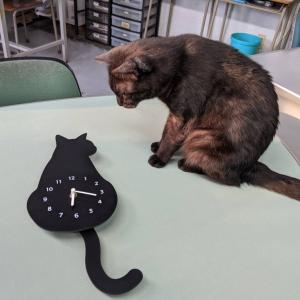 気になる、クロネコ時計