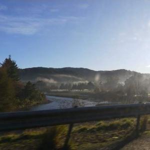 ウェリントン〜ネイピア間のニュージーランド!な風景