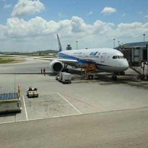 【ANA航空券】4月搭乗分を変更 ===特別対応の搭乗日は往路です。今後は?予約クラス重視の旅行計画===