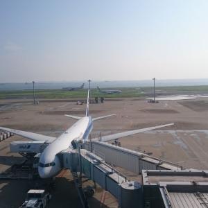 【ANA航空券】緊急事態宣言に合わせて?GW期間中の国内線航空券の特別対応が発表されましたね。