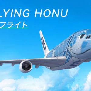 【ANAトラベラーズ】ANA FLYING HONUチャーターフライト ===8月22日成田発着のフライングホヌ90分間遊覧飛行の参加者募集中!===