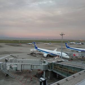 【ANA】2021年度ステイタスに応じたボーナスプレミアムポイント!