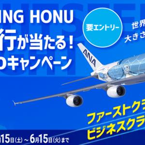 7月31日『ANA FLYING HONUチャーターフライト』はエコノミー席のみ販売!---F、Cクラスはnanacoキャンペーンでプレゼント!---