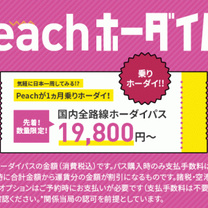 お得なの?10月19日12時、11月乗り放題の「Peachホーダイパス」販売
