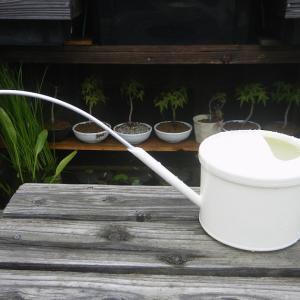 ミニ盆栽に最適な水差しを簡単に製作する。