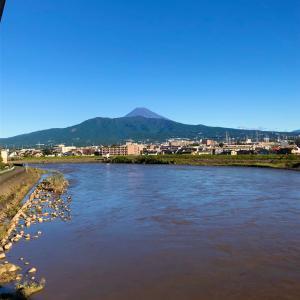 19号翌日、はじめて見る増水した狩野川の光景