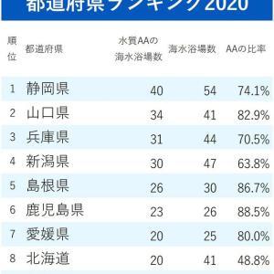 【水がきれいな海水浴場ランキング】静岡県が毎年トップの秘密は