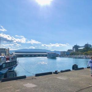 【三連休】は自粛か旅行か?観光地伊豆の港の混み具合
