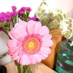 コロナ禍の花農家を応援 数百円からの花のサブスクやってみた