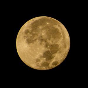 昨日は満月!…だったのですがー