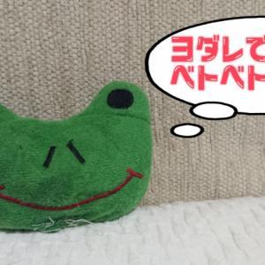 ■トレノ君 (大事なカエル)