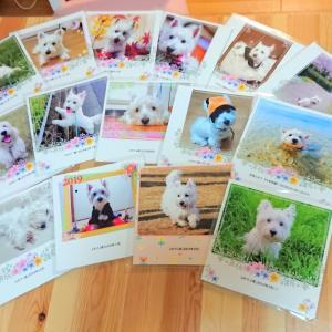 ふわり's PhotoBook