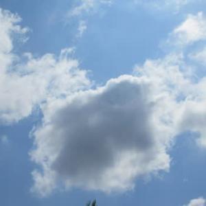 今日の午前中の雲