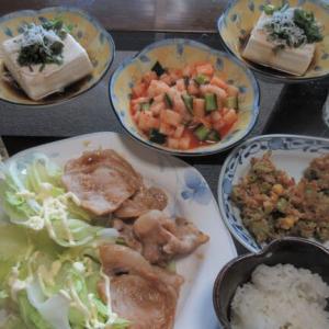 肉や揚げ物や豆腐など