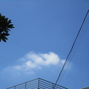 3枚の朝の雲