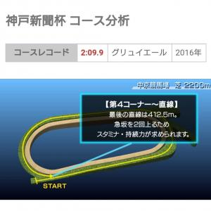 【予告編】明日、神戸新聞杯を検討します。