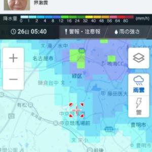 中京は雨。