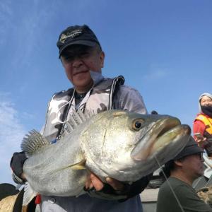 2017年5月12日-14日漁山列島