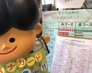 夏の甲子園、埼玉代表校が決まりました!