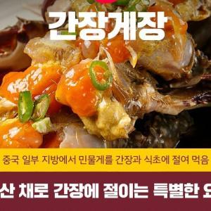 [DA韓国情報]生きているタコをたべる?世界的に韓国だけで主に食べる食べ物、5種類
