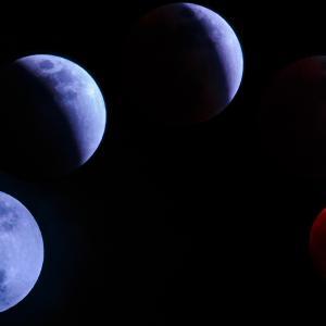 7月満月 惑星配列とライオンズゲートに向けて♡/喜多見 狛江 少人数ヨガ アロマ 薬膳サラフロウ