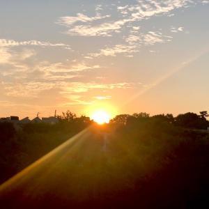 もっと【耳】を澄ませてみませんか♡大地の音がこだまする夏至♡/喜多見狛江ヨガアロマ サラフロウ