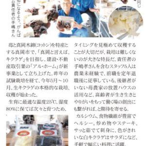 真岡産きくらげ販売店舗追加のお知らせ!